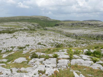 The Burren - view of rocky limestone landscape near the Green Road - 30/6/07